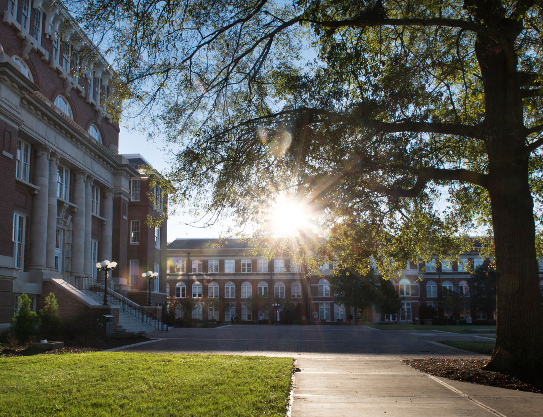 Campus scenic shot of Lee Hall with the sun shining and McCain Hall in the background